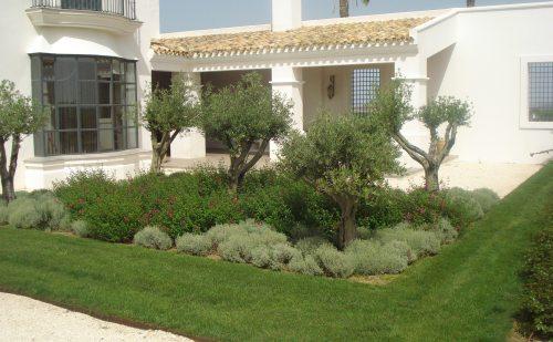 Foto jardín porche